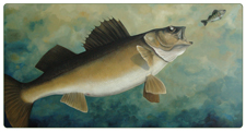 "Fish Paintings - Fish Art ""The Chase"" by Chris Harman (Walleye Art)"