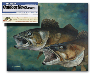 Michigna Outdoor News Wildlife Calendar - Walleye Art