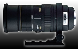 Digital Camera Lenses - Information on our camera lenses preferred by Velvet Green.  Sigma 50-500mm Lense