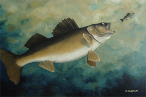 """""""The Chase"""" Walleye"""