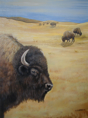 Wildlife Art - Buffalo Painting