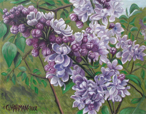 Lilacs Flower Painting