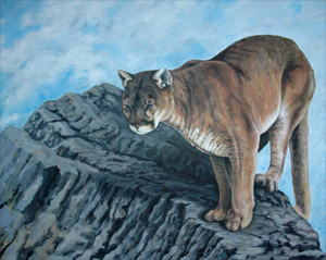 Wildlife Art Painting / Mountain Lion Painting - The View